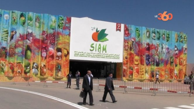 Cover Video - SIAM 2