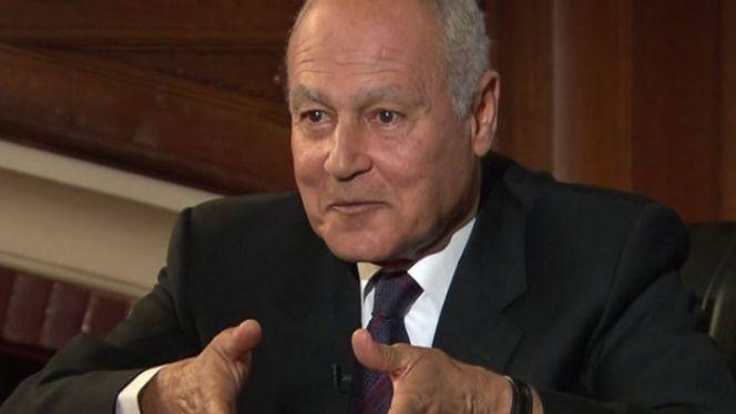 أحمد أبو الغيظ