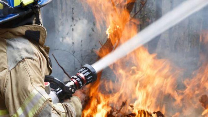 حريق غابوي