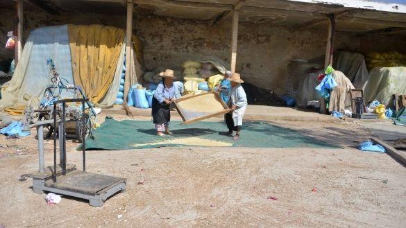 سوق الحبوب