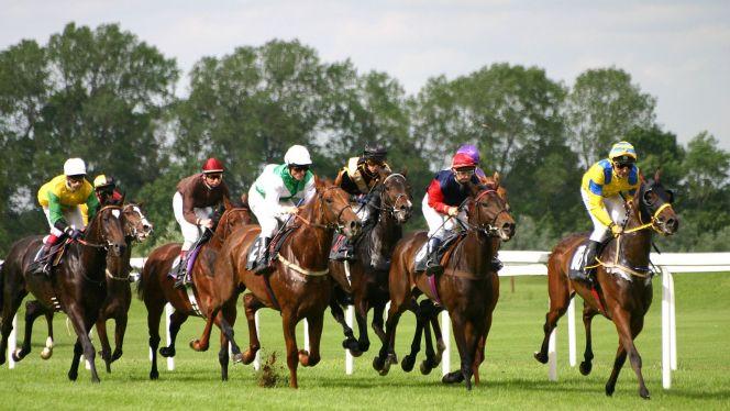 سباق الخيول