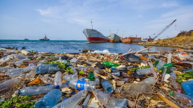 تلوث شاطئ