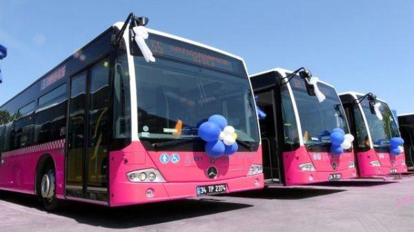 حافلات وردية