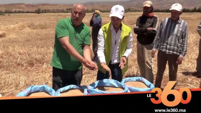 cover: هذه نتائج برنامج مثمر لخدمات القرب في موسم الحصاد بإقليم خنيفرة