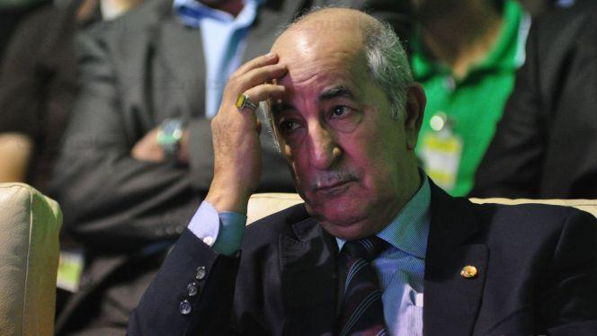 تبون الجزائر