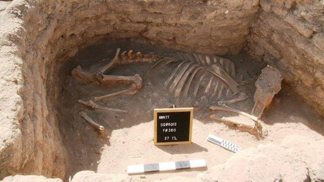 """اكتشاف المدينة الأثرية """"المفقودة"""" بمصر"""