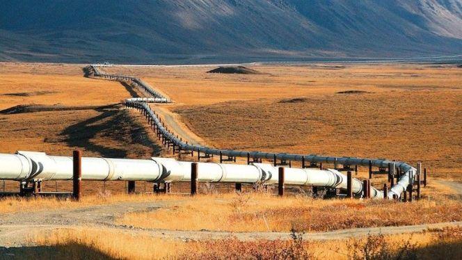 أنبوب الغاز
