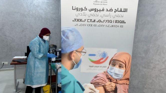 عملية التلقيح بالمغرب