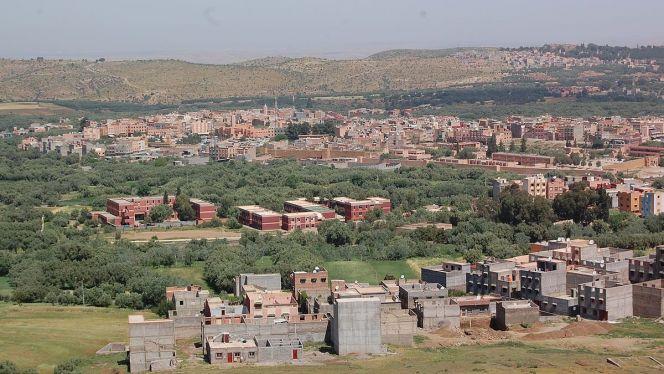 مشهد عام لمدينة دمنات