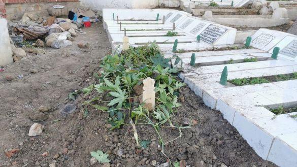 قبر أبرهون