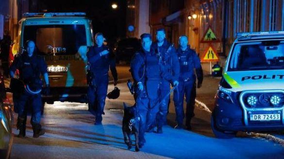 قتلى وجرحى في هجوم نفده شخص بالقوس والسهام في النرويج
