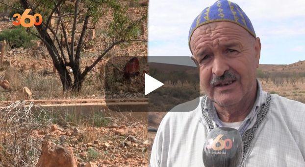 Cover_Vidéo: جماجم وعظام بشرية تثير غضب سكان ضواحي تالوين