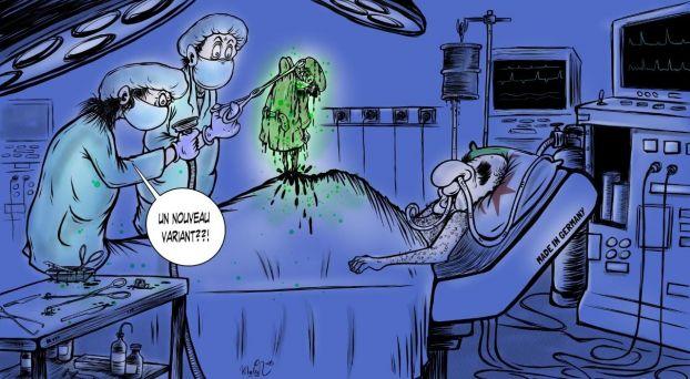 كاريكاتير تبون