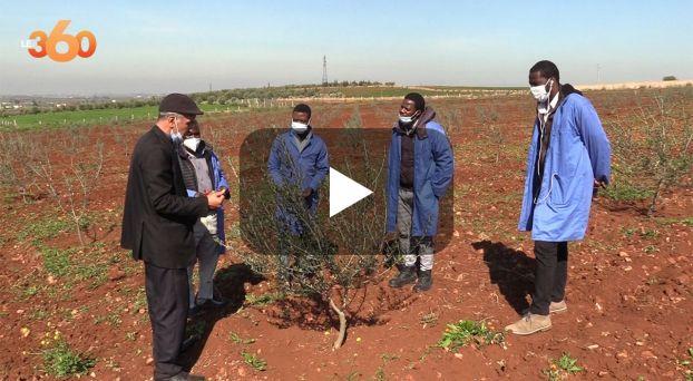 Cover_Vidéo: مهاجرون أفارقة يستفيدون من تكوين مهني في الفلاحة بصفرو