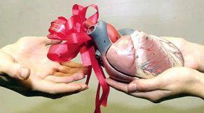 التبرع بالأعضاء