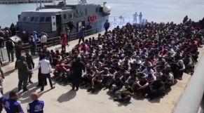مهاجرون بلبيبا