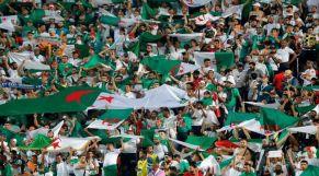 جماهير المنتخب الجزائري