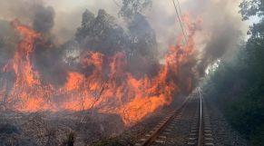 حريق غابوي بطنجة 4