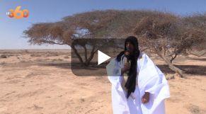 Cover_Vidéo: شجرة الطلح.. صيدلية أهل الصحراء وذهبهم الأخضر