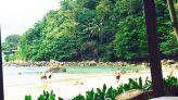 الحديوي في تايلاند