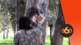 cover Video -Le360.ma • شاب يحول جذوع الاشجار الى لوحات تشكيلية