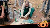 cover vidéo: Le360.ma •شباب ينظفون مقابر الدار البيضاء من أعمال الشعوذة