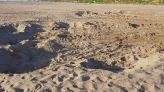 الرمال