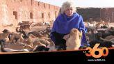 غلاف فيديو - مأوى رحيم ينتشل الكلاب الضالة من شوارع أكادير