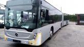 حافلات الرباط