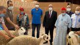 بالصور: ودادية القضاة توزع أضاحي العيد على مراكز اجتماعية بأكادير