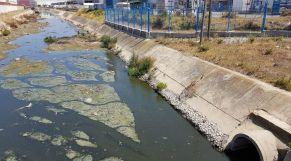 تلوث شاطئ جبيلة 1