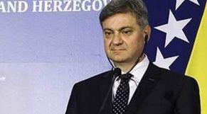 دينيس زفيزديتش