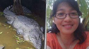 التمساح والضحية