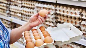 استهلاك البيض
