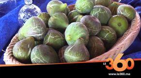 "Cover_Vidéo: Le360.ma •قرية أغبال ببركان تحتفي بـ""الكرموس"" ضمن مهرجانها السنوي"