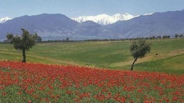 Maroc enneigé