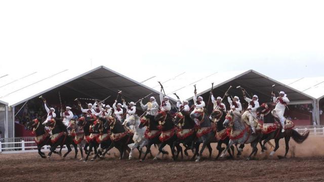 Tbourida Salon du cheval d'el jadida