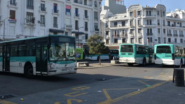 Mdina Bus