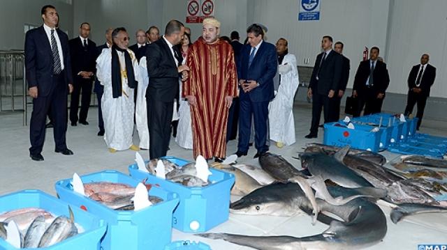 Mohammed VI-halle au poisson de Dakhla