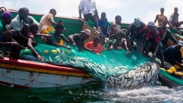 pêche artisanale