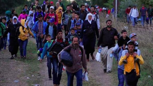 Réfugiés syriens expulsés par Alger