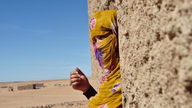 Polisario Sahara Tindouf