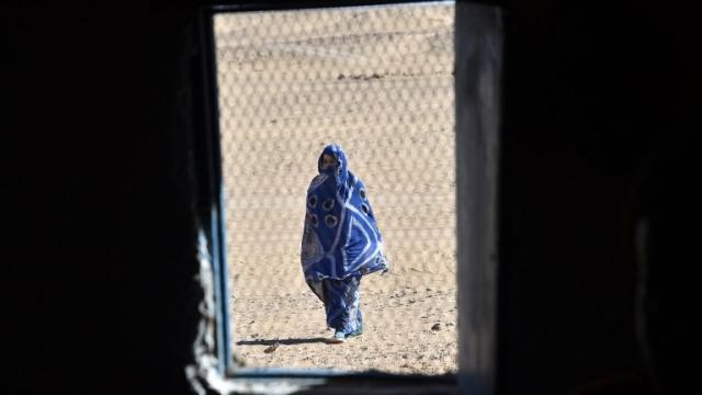 Sahara Tindouf Polisario