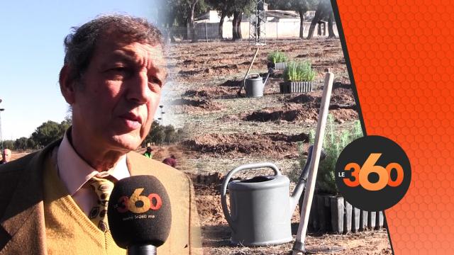 Cover Video -Le360.ma • Vaste opération de plantation de 800.000 arbres à travers le Maroc
