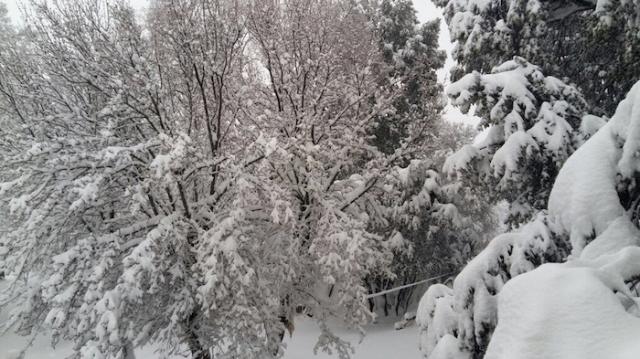 Ifrane-neige-5