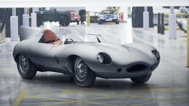 Jaguar Type-D