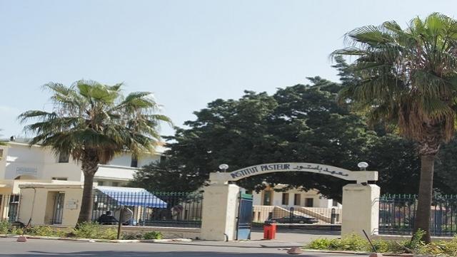 Institut Pasteur Casablanca