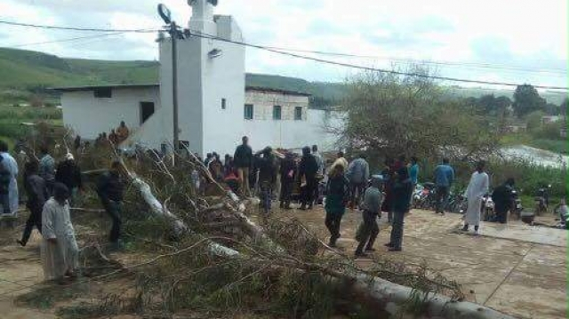 Salé-chutte arbre mosquée