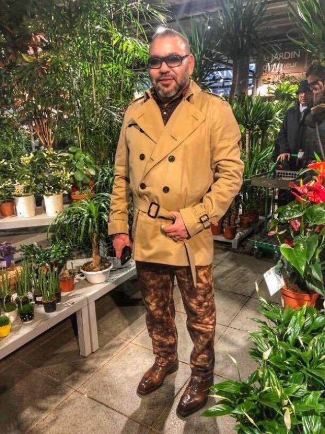 Image du jour. Mohammed VI dans une jardinerie à Paris