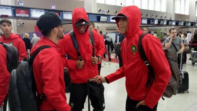 Lions à l'aéroport
